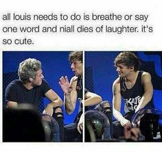 Louis is just like dammnit Niall at least let me get the joke out first would ya?