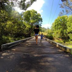 My little monkey never walking always jumping or running || Queensland ||Australia by awolfamily