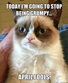 Lolol...luv the grumpy cat!! : D