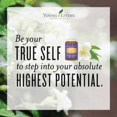Young Living Highest Potential