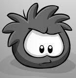 puffle negro