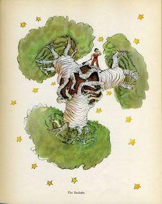 "The Little Prince by Antoine de Saint-Exupery: Author/Illustrator ""The Baobabs"" Petit Prince Quotes, Little Prince Quotes, The Little Prince, Illustrations, Book Illustration, The Prince Book, Baobab Tree, African Diaspora, Vintage Children's Books"