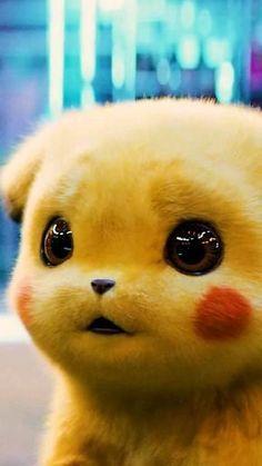 Baby Animals Super Cute, Cute Baby Dogs, Cute Little Animals, Cute Pokemon Wallpaper, Cute Disney Wallpaper, Cute Cartoon Wallpapers, Pikachu Cat, Pikachu Drawing, Cute Cartoon Pictures
