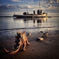 In an ongoing series entitled photojournalist Jorge Saenz uses toy dinosaurs to add a creative twist to his travel photos Dinosaur Photo, Dinosaur Art, Dinosaur Toys, Travel Toys, His Travel, Travel Usa, Polaroid, Photo Games, Jurassic World Dinosaurs