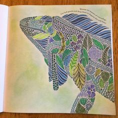 Adult Coloring Books Pages Colouring Color Inspiration Colour Therapy Zentangle Tropical Wonderland In