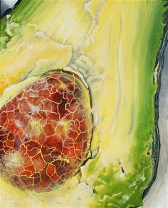 (New Year's Resolution: Pay Attention to details) Avocado by Venus Winston… Art For Sale Online, Original Art, Original Paintings, Fruit Painting, A Level Art, Still Life Art, Gcse Art, Fruit Art, Patterns In Nature