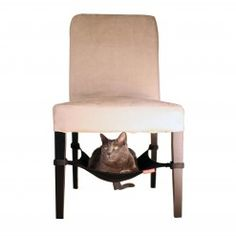 Cat Crib Cat Hammock | Shop quality products for your pet at SkyMall.com!