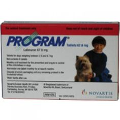 Program Dog Tablets 6s