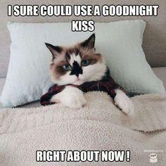 Sleepy time!