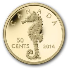 Canada Post - 2014 50-Cent Pure Gold Coin - Sea Creatures: Seahorse - Coins Canadian Coins, Valuable Coins, Gold Money, Gold And Silver Coins, Commemorative Coins, World Coins, Rare Coins, Coin Collecting, Postage Stamps