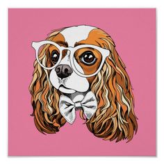 Everything we all admire about the Fun Cavalier King Charles Spaniel Puppies Cavalier King Charles, King Charles Spaniel, Rei Charles, Spaniel Puppies, Cocker Spaniel, Portfolio, Dog Love, Cute Dogs, Your Dog