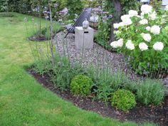 Tips til hvordan et hageprosjekt starter - rundt furua - Furulunden Lawn Edging, Gardening Tips, Pergola, Outdoor Structures, Landscape, Plants, Scenery, Outdoor Pergola, Plant