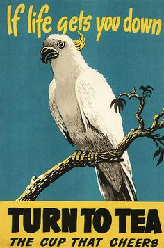 """tea promotional poster """"If Life Gets You Down . Turn to Tea: The Cup That Cheers"""" depicts tropical cockatoo bird perched on a tree branch, c. Te Chai, Tea Quotes, Cuppa Tea, Tea Tins, Tea Art, My Cup Of Tea, Old Ads, Drinking Tea, Vintage Advertisements"""