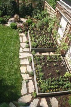 cool 62 Affordable Backyard Vegetable Garden Designs Ideas #vegetablegardeningdesign