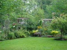very back of yard, a few wooden structures built for accents and height.
