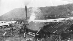 Bloomfield Sawmill in Northern Queensland (year unknown).