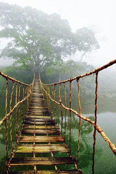 I'm betting this wooden bridge is creaky ;)