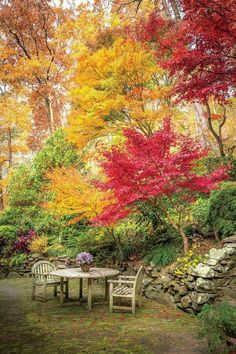 Gardening Autumn - The Gardeners - Paint the Fall with Color - Southernliving. Everyone who visits… - With the arrival of rains and falling temperatures autumn is a perfect opportunity to make new plantations Beautiful Landscapes, Beautiful Gardens, Beautiful Landscape Photography, Landscape Design, Garden Design, Fall Landscape, Autumn Scenes, Garden Pictures, Autumn Garden