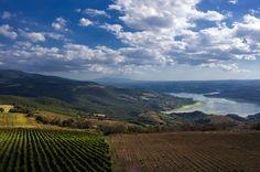 Lake of Corbara - Corbara, Terni Umbria Italy