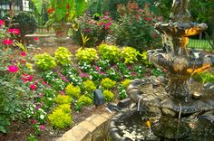 front yard plantings behind fountain