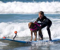 West's autism used to make him afraid of the water, and afraid of dogs. Now he…