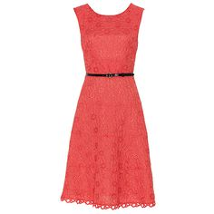 Dahlia Belted Lace Dress - Fashion - Dresses - Jacqui E
