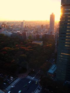 View of Tokyo. Taken from the 29th floor of the Tokyo Hilton in Shinjuku, Japan | Pinned by www.DoubleTreeTorrance.com