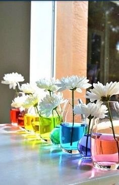 Change the color of your flowers by soaking their steams in food coloring and water