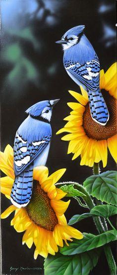 New Offers | Thunder Mountain Press Art Gallery Blue Jay Tattoo, Pretty Birds, Love Birds, Beautiful Birds, Animals Beautiful, Exotic Birds, Colorful Birds, Little Birds, Small Birds