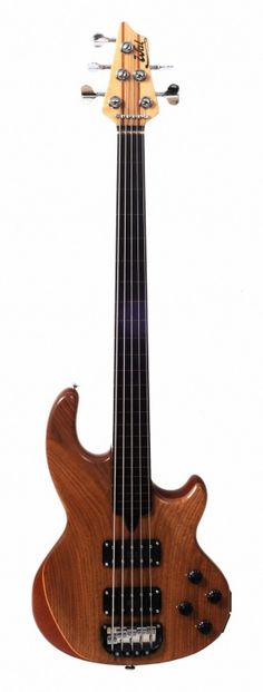 Wall bass (fretless)