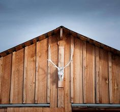 Barn / Cowboy Art / Western Photography / Country Western Decor / Southwest / Brown / Blue / 8x8