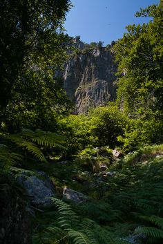 Valle del Asón by Señor L - senorl.blogspot.com.es, via Flickr