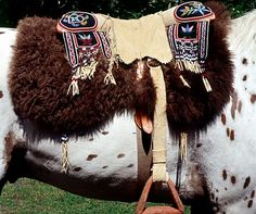 Ojibway / Cree Native saddle made from softer material to keep the horse comfortable.