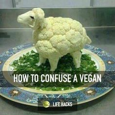 How to confuse a vegan ;)