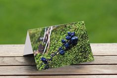 Nature Photo Card Wild Berries-5x7 Blank Card \ Nature Lovers Gift \ Forest Art \ Forest Card