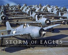 Image result for storm of eagles book
