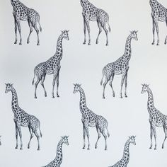 Giraffe Wallpaper: Spot by abnormalsanonymous.com. I just died.