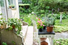 Potting Bench Plans, Carson Ellis, Pinterest Blog, Shade Garden, Summer Vibes, Layout, Diy, Plants, Beautiful