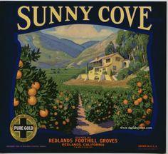 SUNNY COVE Vintage Orange Crate Label