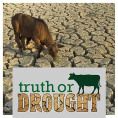 Truth or Drought