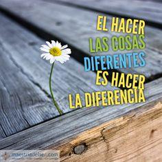 #hacercosas #diferentes #hacerladiferencia #diferencia #conciencia #sabiduría #paz #convicción #maestriadelser