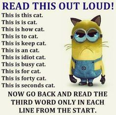Image result for funny stuff to make you laugh
