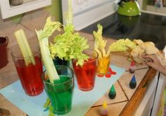 100 Best Food science experiments and projects for kids