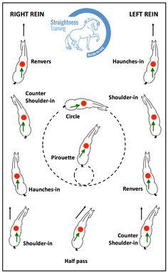 Straightness Training exercises.