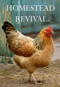 Homestead Revival blog - beautiful, practical.   Not a magazine or a book, but you can read it. ;)   Hugs, Linda :)