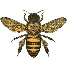 art boho nature bohemian fauna bee bees insect Wings wing insects honey bee black and yellow yellow and black honey bees yellow and white insect art bee art white and yellow honey bee art six legs 6 legs one bee 1 bee one honey bee 1 honey bee Bumble Bee Tattoo, Honey Bee Tattoo, Bumble Bee Wings, Skull Tatto, Neck Tatto, Tattoos Partner, Drawing Heart, Sun Drawing, Honey Bee Drawing