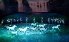 Cavalia's Odysseo - A Must See, Magical Night to Remember!