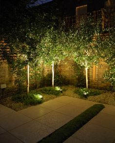 Uplit trees and minimal planting. Very effective.