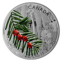 Fine Silver Coin – Forests of Canada: Columbian Yew Tree – Mintage: Canadian Things, Canadian Memes, Silver Coins, Mint Coins, Bee Gifts, Show Me The Money, Coins For Sale, Commemorative Coins, World Coins