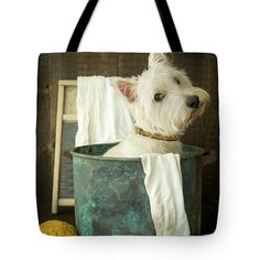 "Wash Day Tote Bag 18"" x 18"" by Edward Fielding"